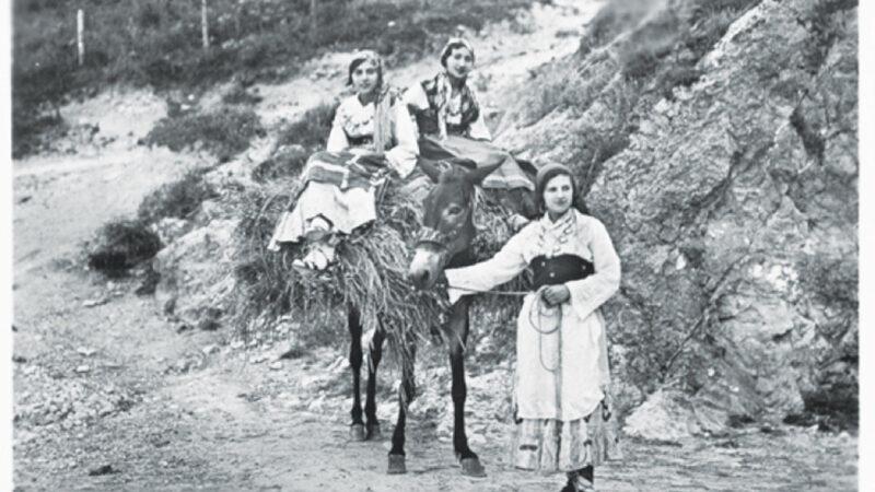 Rete viaria e mezzi di trasporto nel passato pre-unitario in terra d'Abruzzo