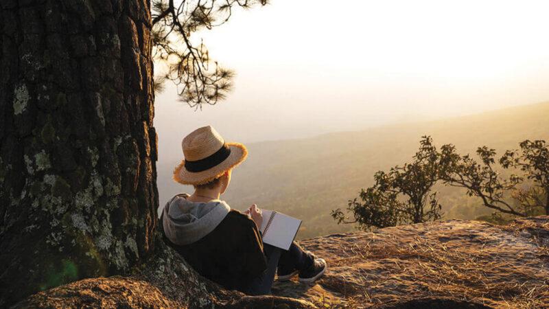La letteratura femminile e il rapporto con il canone letterario