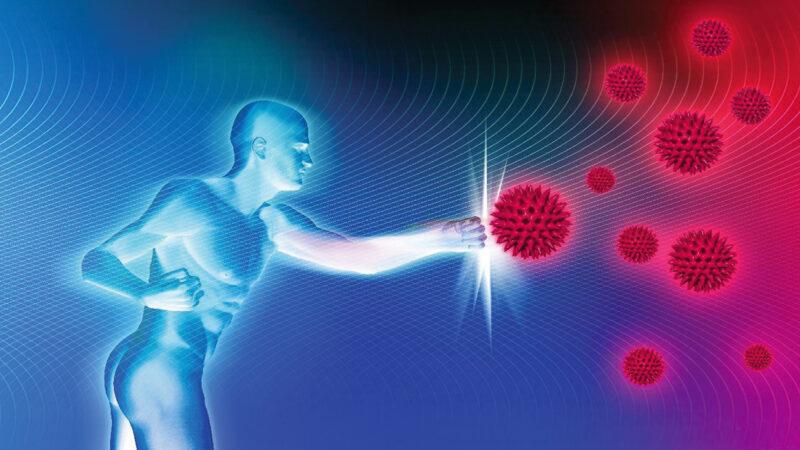 Come rinforzare il sistema immunitario e contribuire ad avere un elevato stato di benessere