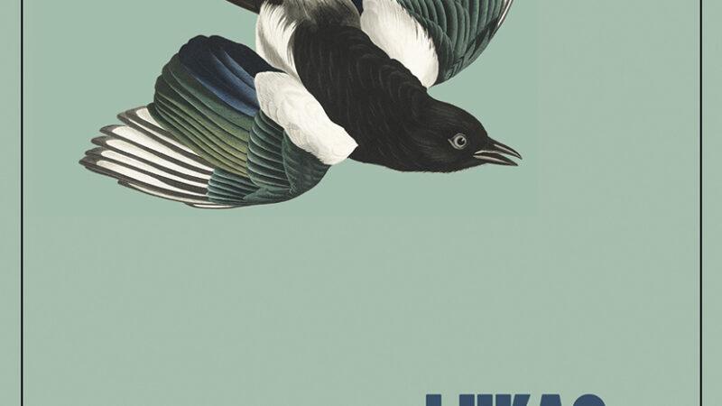 Lukas Bärfuss, Hagard (L'Orma Editore, 2021)
