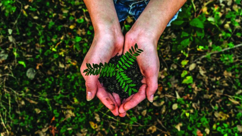 Resilienza trasformativa: dalla fragilità alla ripresa sostenibile